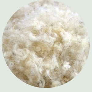 image of wool inside Harbor Springs Mattress